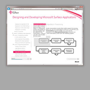 Microsoft Surface 2.0 Designer Training Course Graphics and Skin